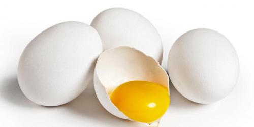 Selain Kuatkan Tenaga Dalaman Ini Khasiat Telur Ayam Kampung Yang Lelaki Harus Buru Maskulin
