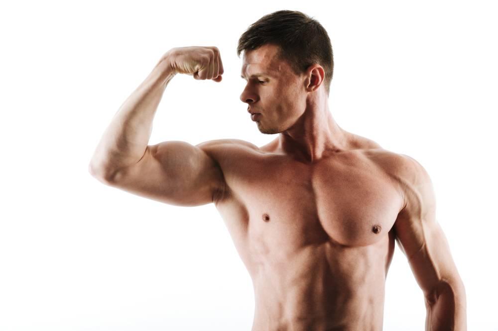 workout bisep trisep